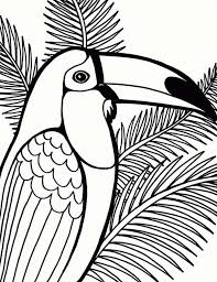 Parrot On Coconut Tree Coloring Page
