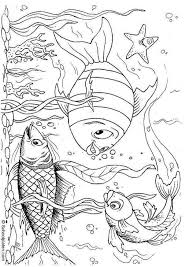 Fish Coloring Page For Inspiration Or The Little Ones To Add Their Own Underwater Scene