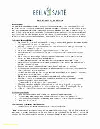Hair Stylist Resume Example Fashion Template Updated Best