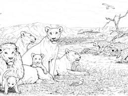 Lion Pride And Hyenas Coloring Page Free Printable Pages