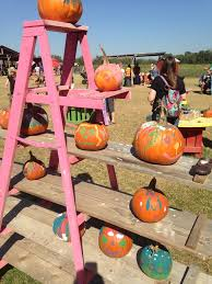 Live Oak Canyon Pumpkin Patch 2015 by Pumpkin Patches Abound In San Antonio And Around