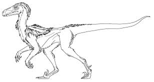 Velociraptor Coloring Page Pages Eassume To Download