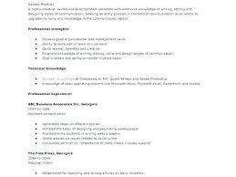 Bullet Point Resume Points Examples Job