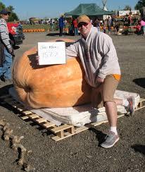 Siegels Pumpkin Farm by Illinois Giant Pumpkin Grower U0027s Association U2013 Illinois Giant