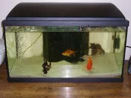 pompe a chaleur aquarium forsaken