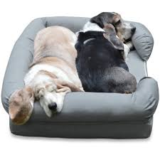 Top Rated Orthopedic Dog Beds by 5 Tips To Help Pets Sleep Better And 5 Best Pet Beds Petslady Com
