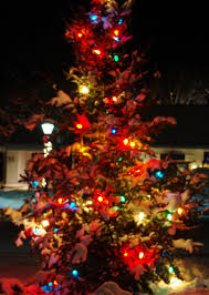 The Grinch Xmas Tree by Litchfield County Real Estate Information Local Events And More