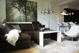 Brown Living Room Ideas by Apartment Design Brown Sofa In Single White Chair On White Fur