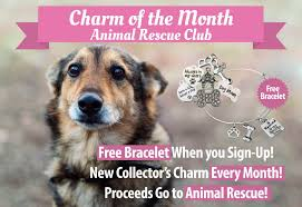 Charm Of The Month' Animal Rescue Club – Lolawawa's Barkhappy Sacramento Brunch Pawty Benefiting Chako Pitbull Rescue And Advocacy September 2016 Box Monthly Subscription Review Hello Flea Tick Coupons Offers Bayer Petbasics Pet Adoption Website Ux Design Project On Behance Hope Animal Of Iowa Hills Special Prairie Paws More Ways To Help Donate Affiliates Manager Script Php Adoptable Dogs Anderson Shelter 40 Off Lovehoney Promo Codes Aug 2019 Goodshop Lolawas Fundraising Calendar Raises Over 5k For Animals