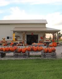 Pumpkin Farms Southern Illinois by Home