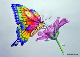 97 Best Colored Pencil Ideas Images On Pinterest