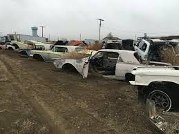 100 Shelby Elliott Trucks Old Thunderbirds At S Auto Truck Sales In Dacono CO