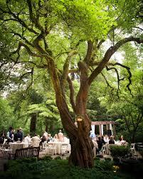 Wedding VenueSimple Outside Garden Venues Theme Ideas Magazine Amazing
