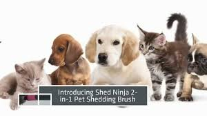 Best Horse Shedding Blade by Shed Ninja Pet Grooming Tools Best Shedding Tool For Dogs Youtube
