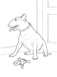 Husky Coloring Pages Realistic Dog Color Bros