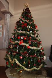 Christmas Tree Types Canada by Traditional German Christmas Tree Rainforest Islands Ferry