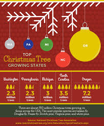 Griswold Christmas Tree Farm by A Green Living Christmas Fix Com
