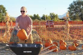 Pumpkin Patch Reno Nv by Pumpkin Pickin U0027 At Ferrari Farms Change With Us
