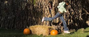 Wv Pumpkin Festival Milton Wv by All The Best Mountain Fall Fests Wild Wonderful West Virginia