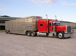 Live Stock Atlas Cattle Transport Truck In Morocco Editorial Stock Image Of 100lt 20 Livestock Tractor Trailer Bateson Trailers 2004 Volvo Fm9 Rigid 6x4 Sheep Goat For Sale Trucks For Hire Willow Creek Ranch Live Atlas Plowman Containers Brothers 35 X 18 Cattle Trailers Sale Junk Mail Boxes Used P D Commercials Jm Welding Tamworth Australian Crate Specialists Versatility Makes Heavy Duty Hino The Right Choice Auto Moto Cannon Manufacturers Makers 1970 M35a2 Turbo Feed Truck Sale