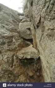 100 Wildcat Ridge Appalachian Trail Trail Stock Photos