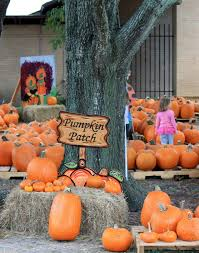 Pumpkin Patch Fort Worth Tx by Pumpkin Patch United Methodist Church Clear Lake City Texas