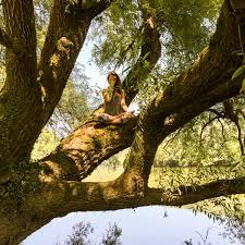 Aerial Yoga Benefits Psychology The Unnata Method Of Aerial