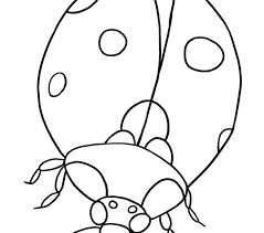 Ladybug Coloring Pages Free Printable For Kids Download