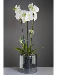 pot et bac à fleurs vase orchidée masgabana noir