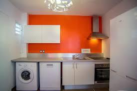 paruline en cuisine achat appartement les abymes guadeloupe