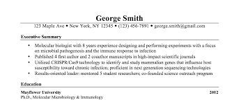 Gallery Of Resume Example 47 Professional Summary Examples New Executive For