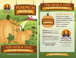 Pumpkin For Pets Diarrhea by Pumpkin For Loose Stools The Cat Site