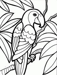 Coloring PageDecorative Page Birds Surprising