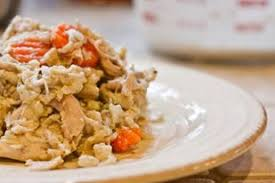 Turkey And Pumpkin For Dog Diarrhea by The Bland Sick Diet For Dogs What To Feed Your Sick Dog