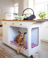 Creative Ways To Incorporate Pet Items Into Your Home Decor