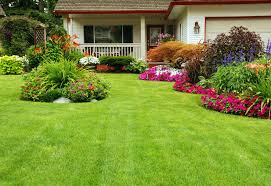 50 Best Backyard Landscaping Ideas And Designs In 2017 Backyard Design Upgrades Pool Tropical With Coping Silk 11 Ways To Upgrade Your Mental Floss Nextlevel Outdoor Makeover Of A Bare Lifeless Best 25 Cheap Backyard Ideas On Pinterest Solar Lights 20 Yard Landscaping Ideas For Front And Small Spaces We Love Bob Vila Greek Escape Video Diy Budget Patio Easy 5 Cool Prefab Sheds You Can Order Right Now Curbed 50 Designs In 2017 36 Best Images About Faux Stone Landscape Se Wards Management