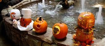 Pumpkin Farms In Wisconsin Dells by Fun
