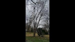 Flagpole Christmas Tree by Fast Easy Diy Mega Christmas Tree 25 U0027 No Ladder Needed Using