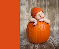 Pumpkin Patch North Austin Tx by 25 Babies In Pumpkins Babies Photography And Baby Photos