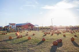 Carmichaels Pumpkin Patch Oklahoma by Pick A Pumpkin Tulsapeople October 2017 Tulsa Ok