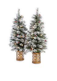 Home AccentsR 4 Ft Pre Lit Flocked Porch Trees