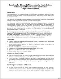 Sample Portfolio In Ojt Save Certificate For It Student Copy Cute Resume As