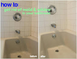 Serratia Marcescens Bathroom Treatment by Beauteous 90 How To Get Rid Of Mold In Bathroom Naturally Design