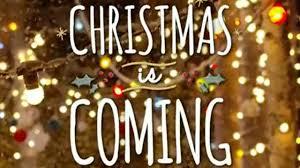 Qvc Christmas Tree Topper by Qvc Com Christmas In July Christmas Tree