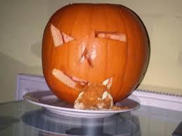 Homestar Runner Halloween Pumpkin by Show Us Your Pumpkin Archive Littlebigplanet Central Forums