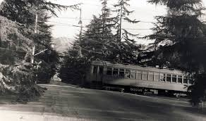 Christmas Tree Lane South Pasadena by Craig Rasmussen Collection Pacific Electric Railway Historical