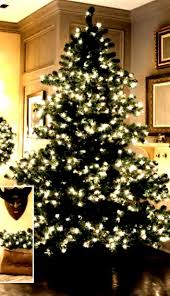 anabell prelit tree betty s house