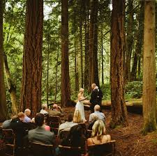 Forest Elopement at Snoqualmie Falls Samantha Calen