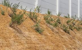 100 Angelos Landscape Erosion Control Straw Blankets Supplies
