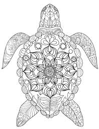 Free Printable Sea Turtle Adult Coloring Page Download It In PDF Format At